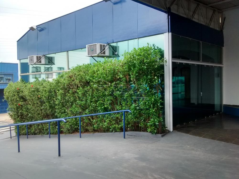 Alugar Comerciais / Salas em São José do Rio Pardo apenas R$ 6.000,00 - Foto 4
