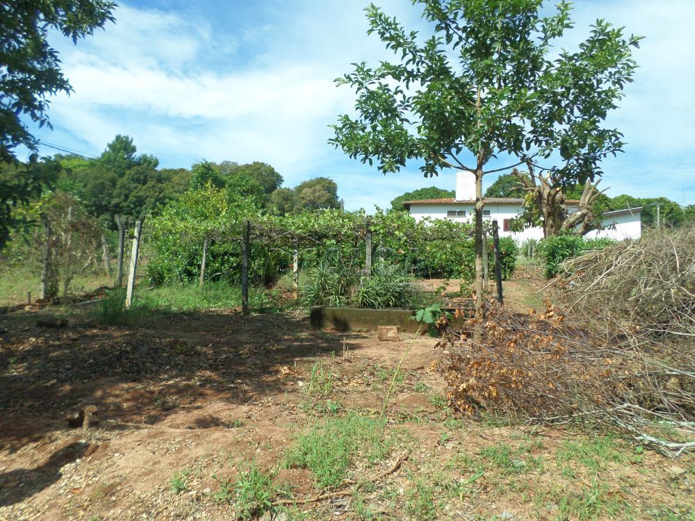Alugar Rurais / Chácaras em São José do Rio Pardo apenas R$ 3.500,00 - Foto 39