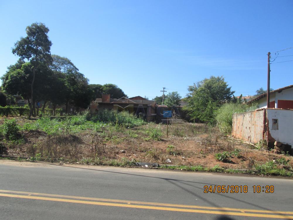 Comprar Terrenos / Padrão em São José do Rio Pardo apenas R$ 85.000,00 - Foto 1