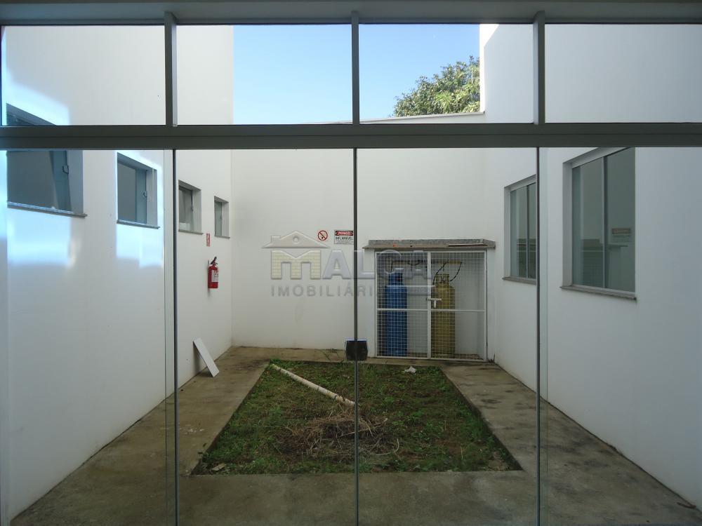 Alugar Comerciais / Salões em São José do Rio Pardo apenas R$ 7.800,00 - Foto 32