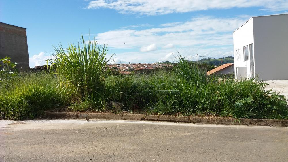 Comprar Terrenos / Padrão em São José do Rio Pardo apenas R$ 95.000,00 - Foto 1