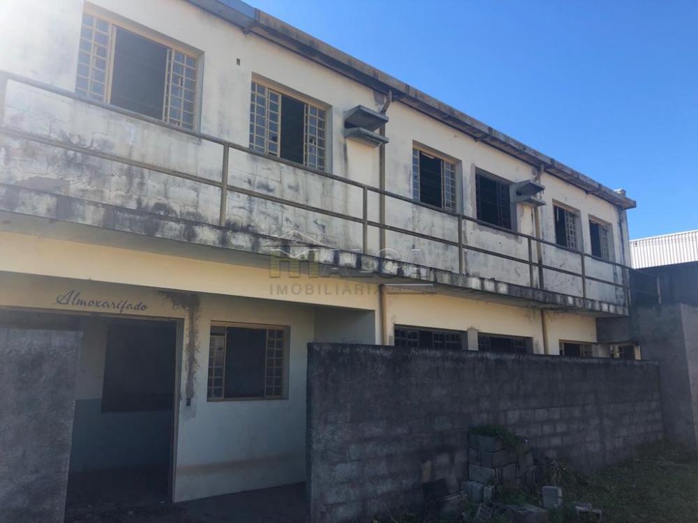 Alugar Comerciais / Galpão em São José do Rio Pardo apenas R$ 6.500,00 - Foto 8