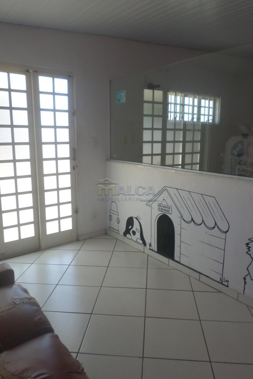 Alugar Comerciais / Salas em São José do Rio Pardo R$ 800,00 - Foto 3