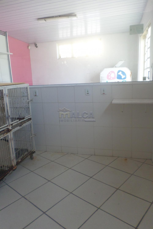 Alugar Comerciais / Salas em São José do Rio Pardo R$ 800,00 - Foto 5