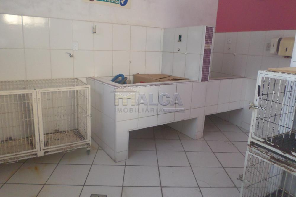 Alugar Comerciais / Salas em São José do Rio Pardo R$ 800,00 - Foto 6