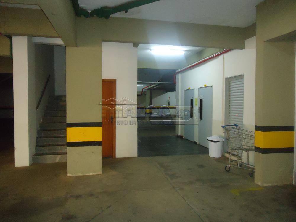 Alugar Apartamentos / Condomínio em São José do Rio Pardo apenas R$ 650,00 - Foto 41