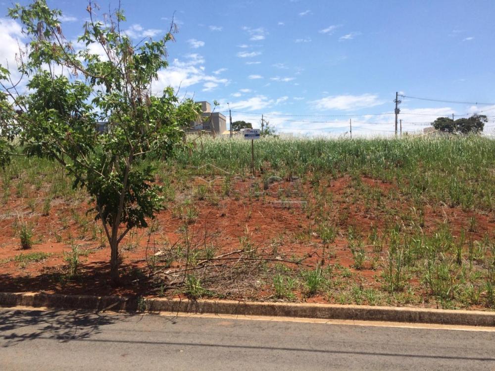 Comprar Terrenos / Padrão em São José do Rio Pardo R$ 106.000,00 - Foto 4