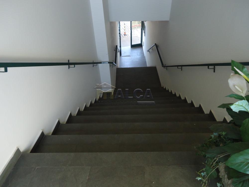 Alugar Apartamentos / Padrão em São José do Rio Pardo apenas R$ 700,00 - Foto 3