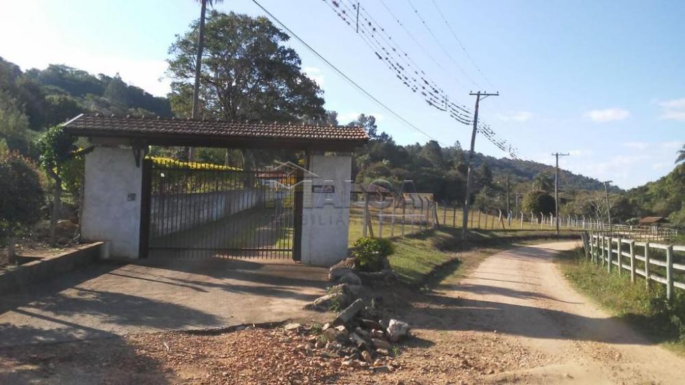 Comprar Rurais / Sitios em São José do Rio Pardo apenas R$ 1.300.000,00 - Foto 1