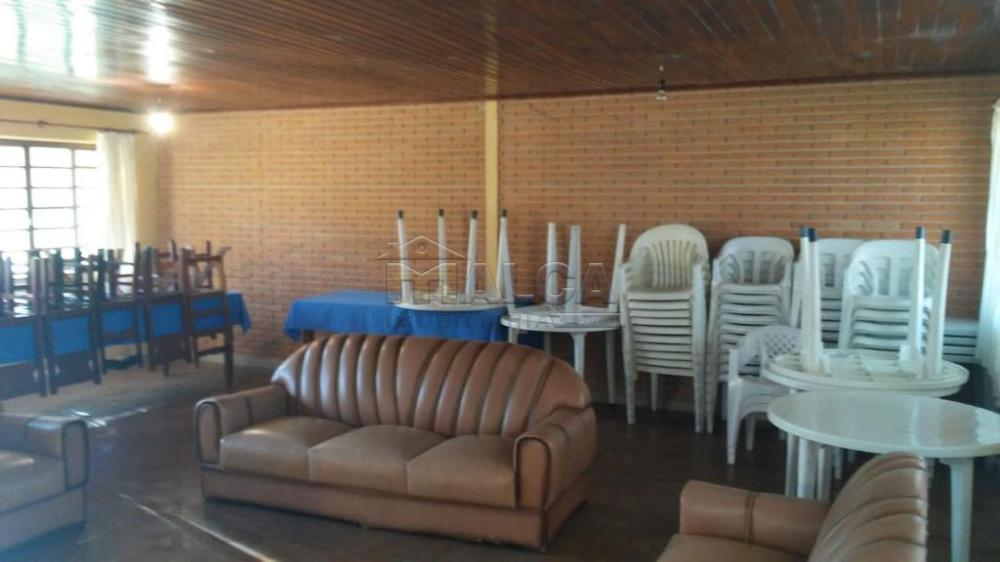 Comprar Rurais / Sitios em São José do Rio Pardo apenas R$ 1.300.000,00 - Foto 16