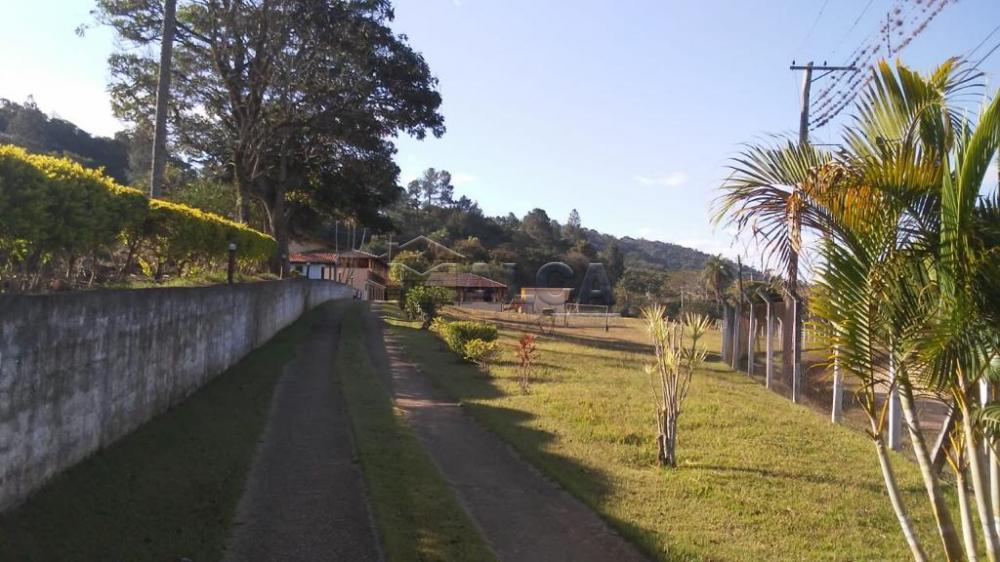 Comprar Rurais / Sitios em São José do Rio Pardo apenas R$ 1.300.000,00 - Foto 29