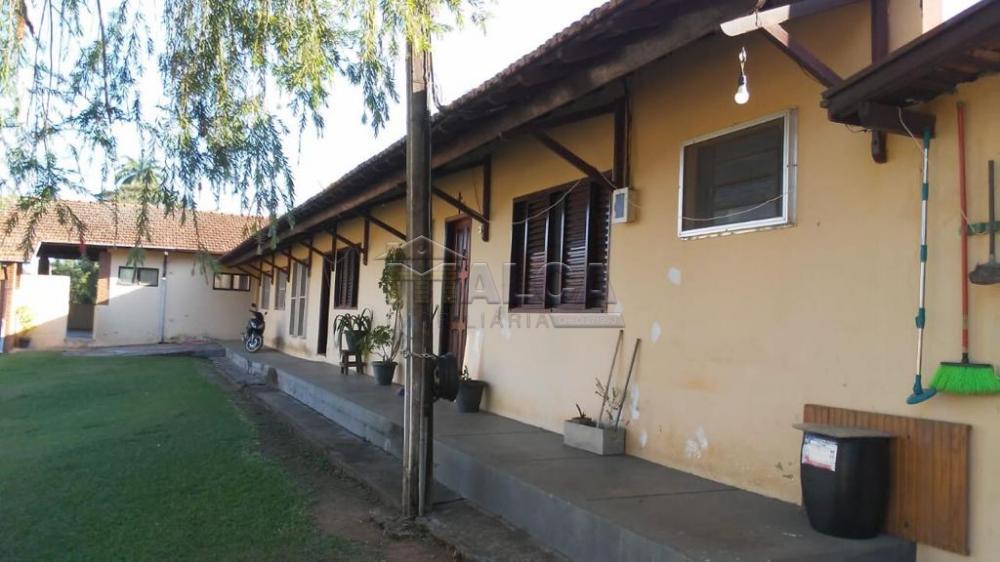 Comprar Rurais / Sitios em São José do Rio Pardo apenas R$ 1.300.000,00 - Foto 32