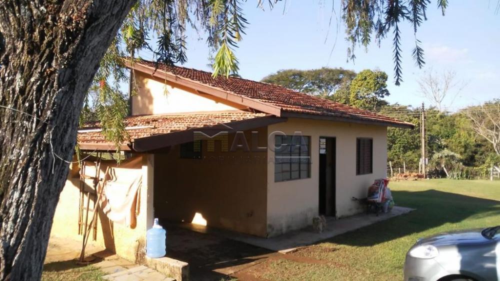 Comprar Rurais / Sitios em São José do Rio Pardo apenas R$ 1.300.000,00 - Foto 33