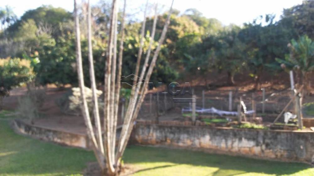 Comprar Rurais / Sitios em São José do Rio Pardo apenas R$ 1.300.000,00 - Foto 35