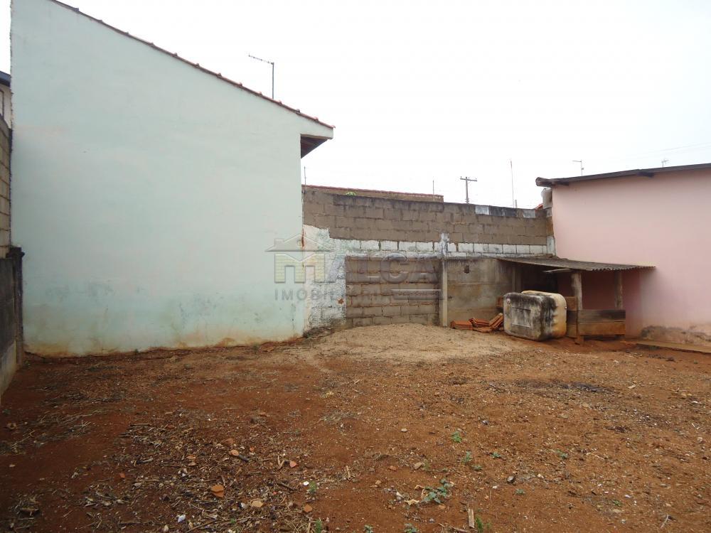 Alugar Casas / Padrão em São José do Rio Pardo apenas R$ 770,00 - Foto 37
