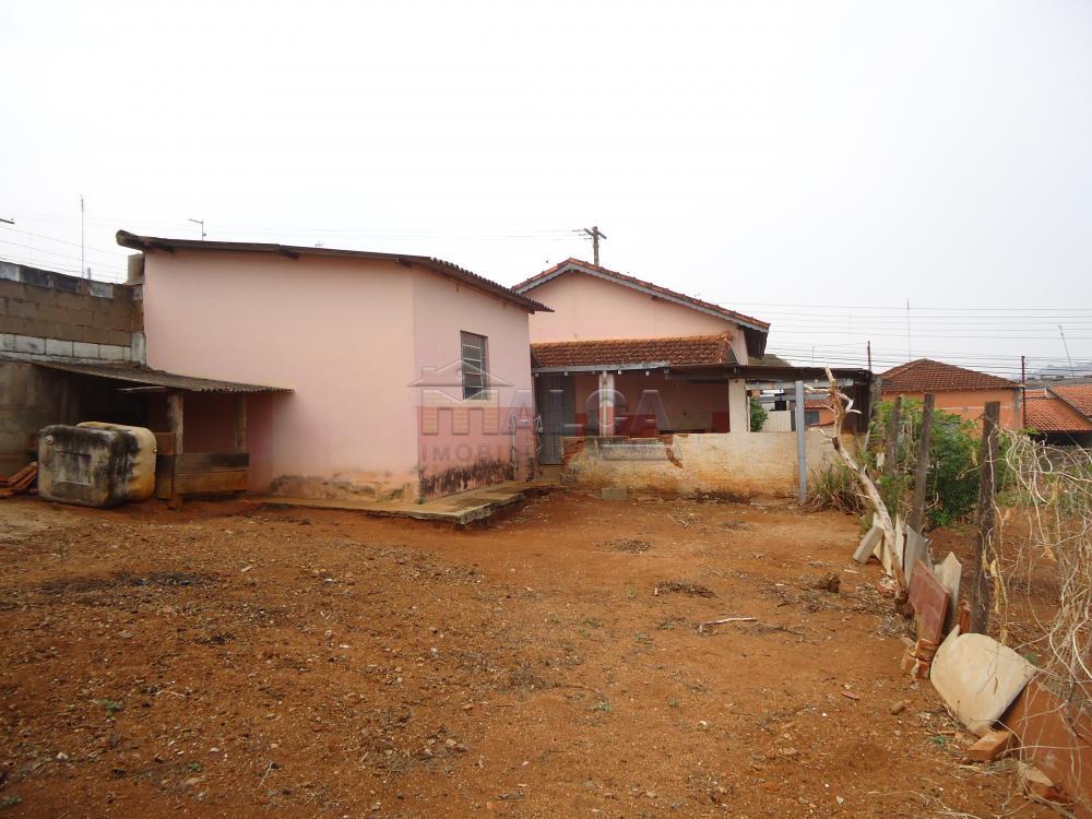 Alugar Casas / Padrão em São José do Rio Pardo apenas R$ 770,00 - Foto 38