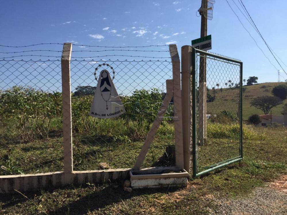 Comprar Rurais / Sitios em São José do Rio Pardo apenas R$ 650.000,00 - Foto 3
