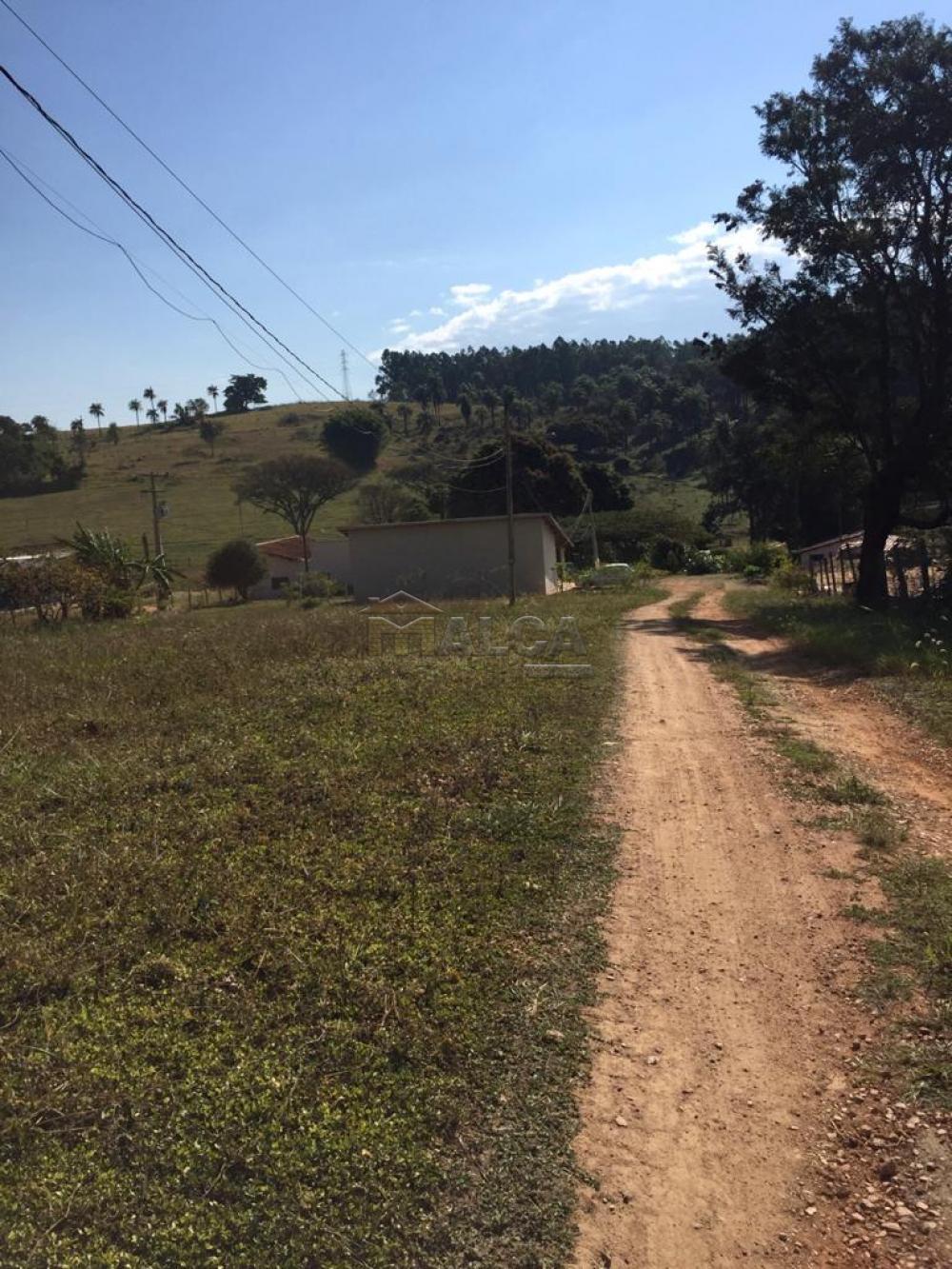Comprar Rurais / Sitios em São José do Rio Pardo apenas R$ 650.000,00 - Foto 4