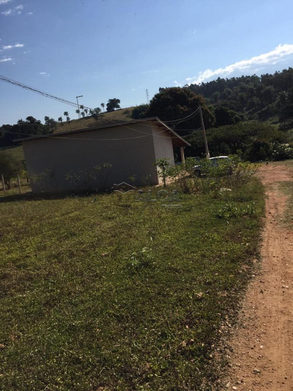 Comprar Rurais / Sitios em São José do Rio Pardo apenas R$ 650.000,00 - Foto 5