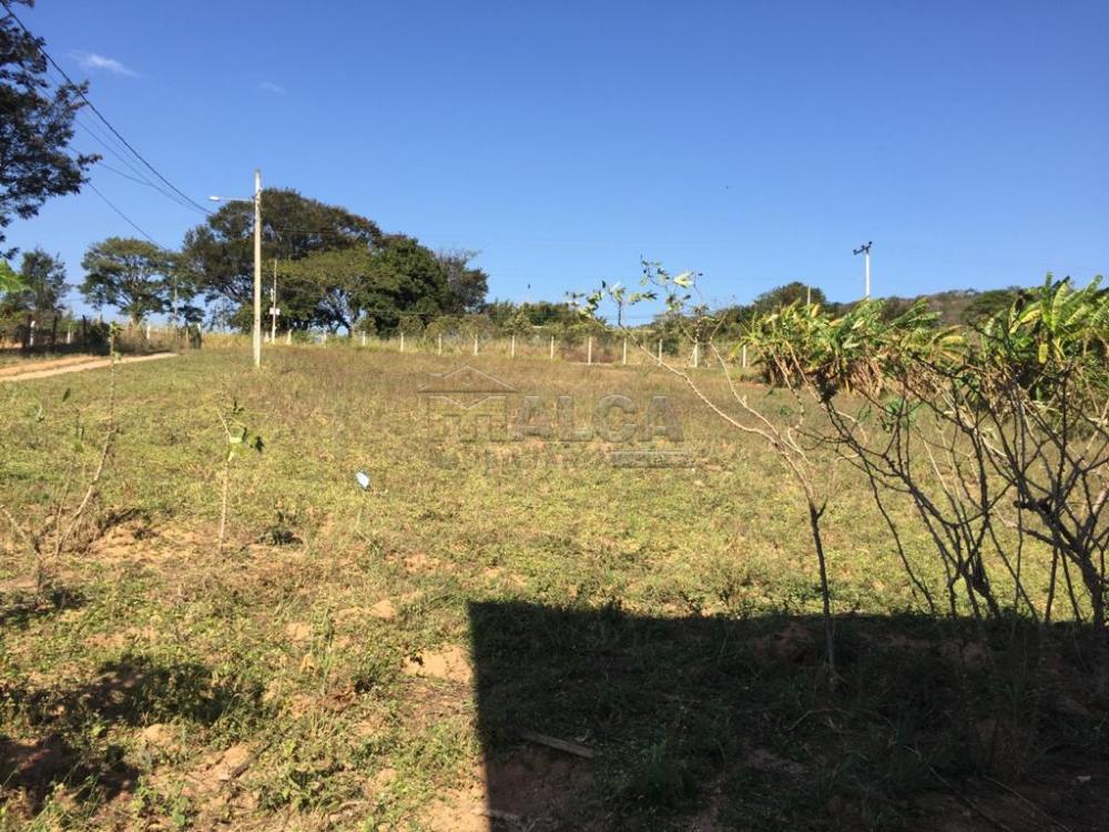 Comprar Rurais / Sitios em São José do Rio Pardo apenas R$ 650.000,00 - Foto 6