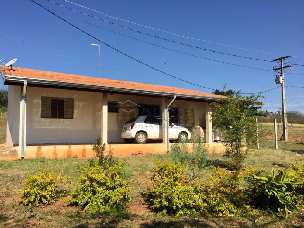 Comprar Rurais / Sitios em São José do Rio Pardo apenas R$ 650.000,00 - Foto 8
