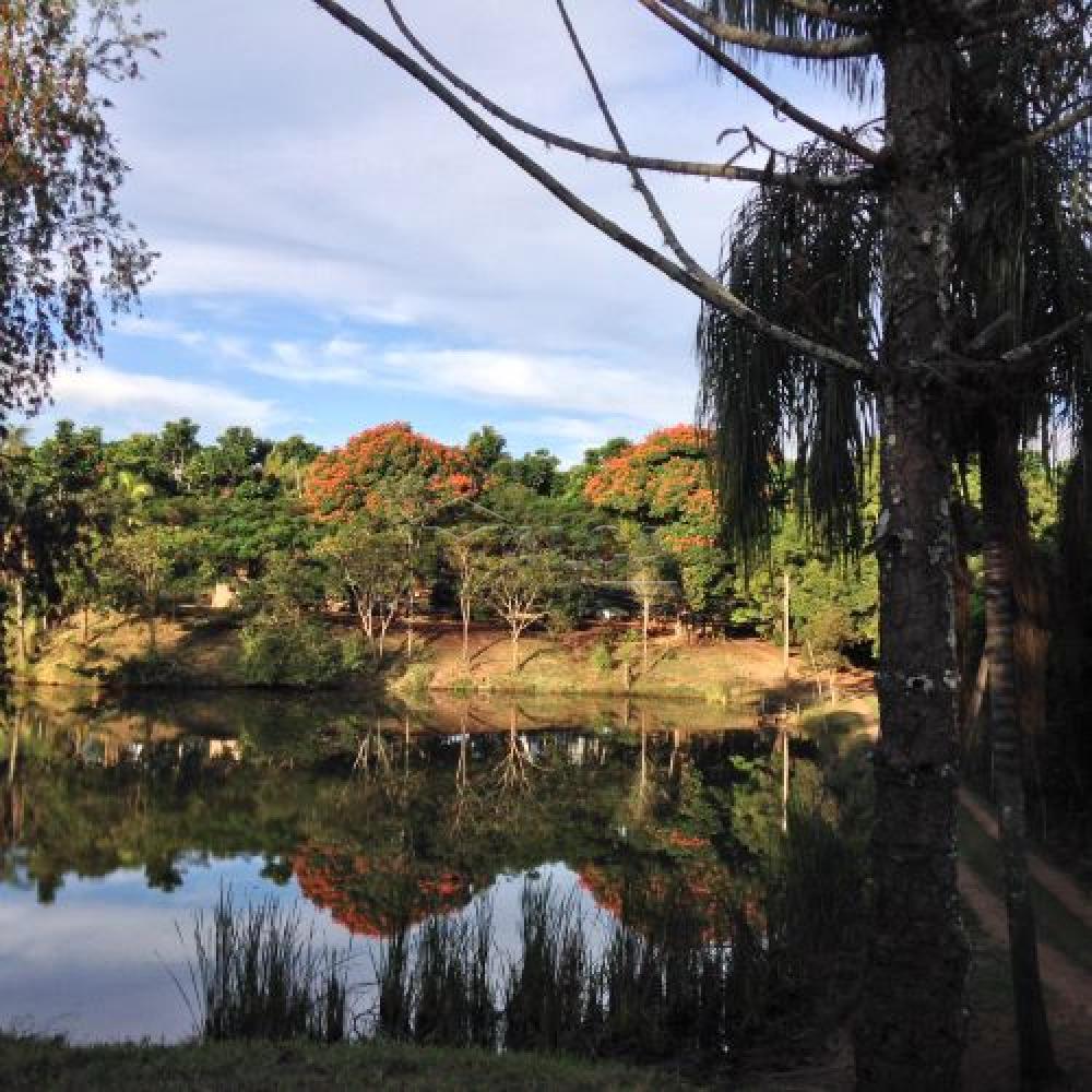 Comprar Rurais / Sitios em Itobi apenas R$ 1.270.290,00 - Foto 6