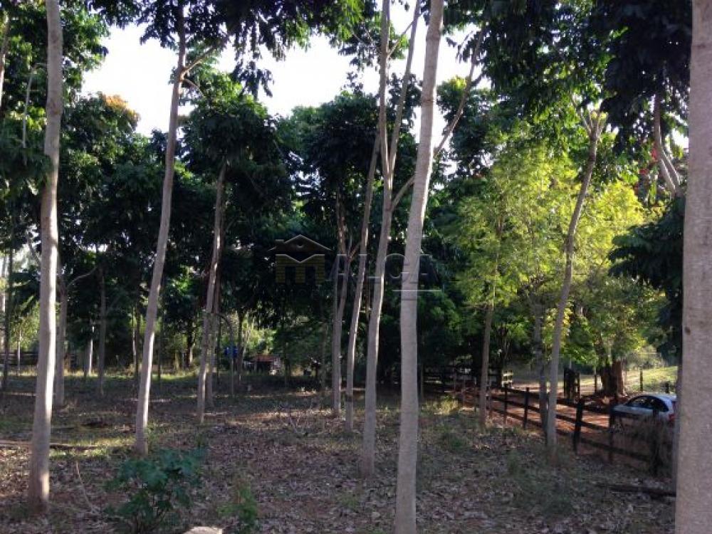 Comprar Rurais / Sitios em Itobi apenas R$ 1.270.290,00 - Foto 18