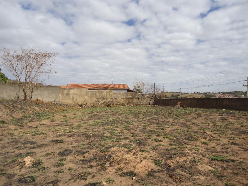 Comprar Terrenos / Padrão em São José do Rio Pardo R$ 318.000,00 - Foto 6