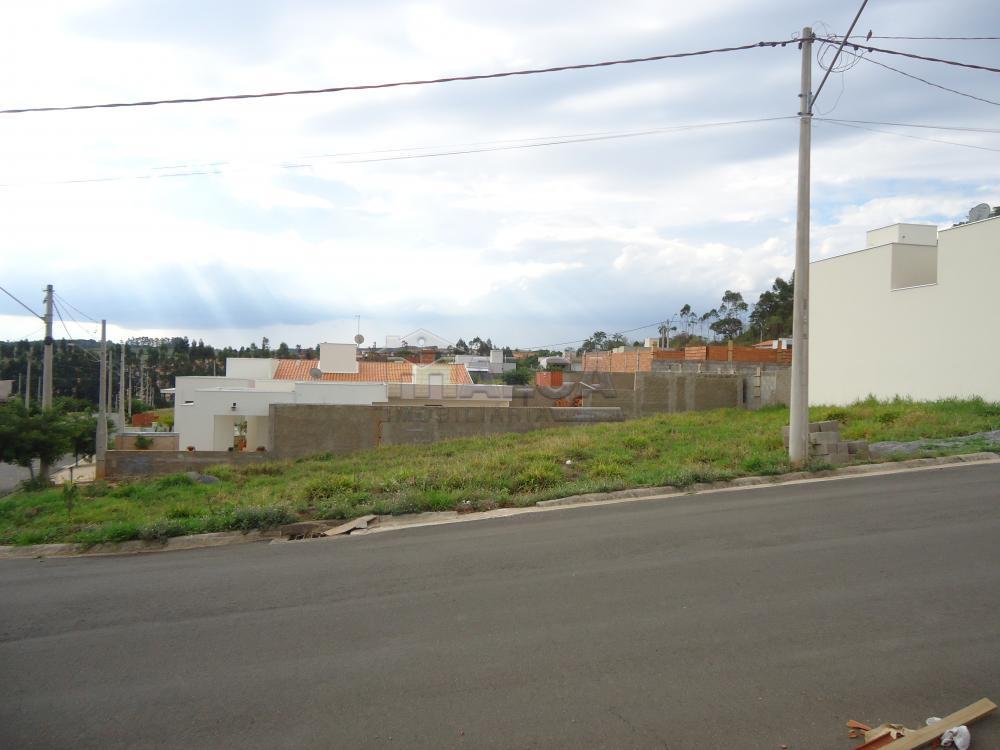 Comprar Terrenos / Padrão em São José do Rio Pardo R$ 181.000,00 - Foto 3