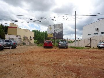 Sao Jose do Rio Pardo Vila Brasil Terreno Locacao R$ 800,00  Area do terreno 1200.00m2