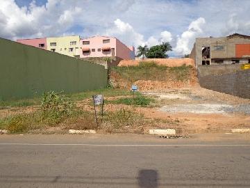 Sao Jose do Rio Pardo Vila Brasil Terreno Locacao R$ 1.200,00