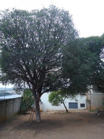 Alugar Casas / Padrão em São José do Rio Pardo R$ 800,00 - Foto 15
