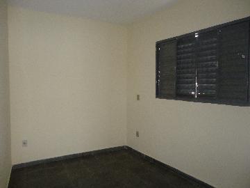 Alugar Casas / Padrão em São José do Rio Pardo R$ 800,00 - Foto 10