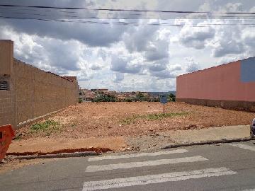 Sao Jose do Rio Pardo Jardim Nova Belmonte Terreno Locacao R$ 900,00