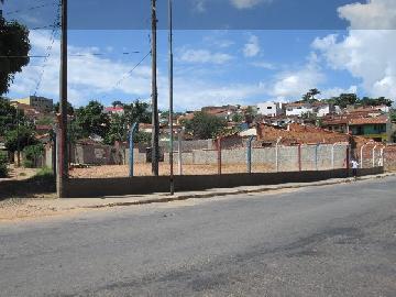 Alugar Comerciais / Terrenos em São José do Rio Pardo. apenas R$ 2.000,00