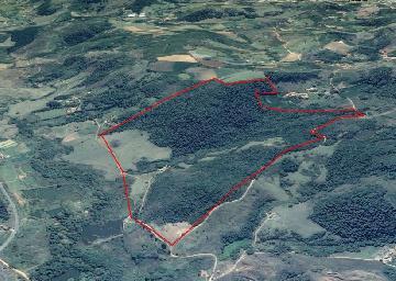 Rurais / Sitios em São Sebastião da Grama , Comprar por R$1.400.000,00