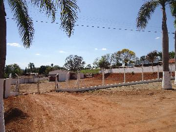 Sao Jose do Rio Pardo Zona Rural Comercial Locacao R$ 1.600,00  Area do terreno 4000.00m2 Area construida 250.00m2