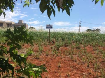 Comprar Terrenos / Padrão em São José do Rio Pardo R$ 106.000,00 - Foto 1