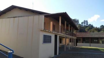 Comprar Rurais / Sitios em São José do Rio Pardo R$ 1.300.000,00 - Foto 5