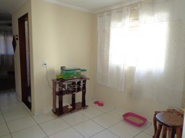 Comprar Casas / Padrão em São José do Rio Pardo R$ 318.000,00 - Foto 19