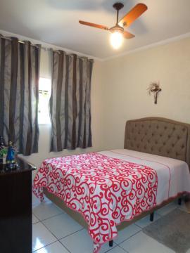 Comprar Casas / Padrão em São José do Rio Pardo R$ 318.000,00 - Foto 20