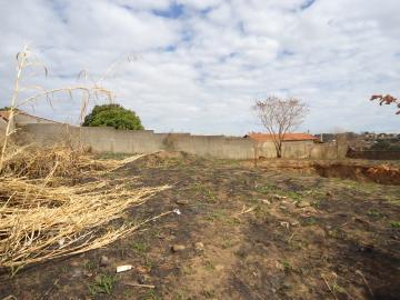Comprar Terrenos / Padrão em São José do Rio Pardo R$ 318.000,00 - Foto 3