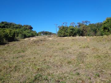 Alugar Rurais / Sitios em São José do Rio Pardo. apenas R$ 750.000,00